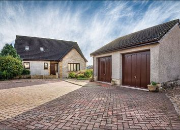 Thumbnail 4 bed detached house for sale in Hoggan Way, Alva