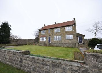 Thumbnail 4 bedroom detached house for sale in Dam Street, Loftus, Saltburn-By-The-Sea