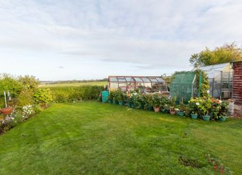 Thumbnail 3 bedroom detached bungalow for sale in Rectory Lane, Barham, Canterbury