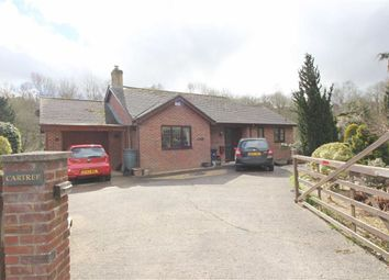 Thumbnail 2 bed detached bungalow for sale in Cartref, New Road, Llanfair Caereinion, Welshpool, Powys