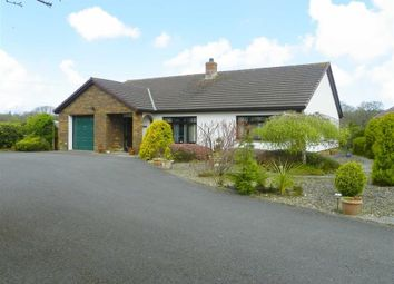 Thumbnail 3 bed detached bungalow for sale in Lon Helyg, Llechryd, Cardigan