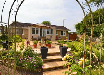 Thumbnail 3 bed detached bungalow for sale in Green Lane, Hooke, Beaminster