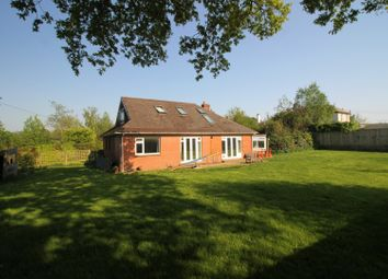 Thumbnail 5 bed detached bungalow for sale in Mill Lane, Ottery St. Mary
