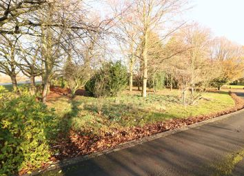 Thumbnail Land for sale in North Street, Winterton, Scunthorpe