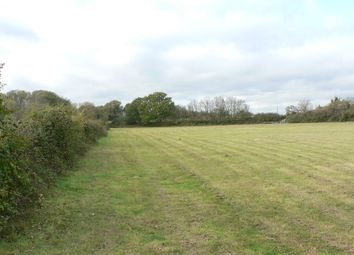 Thumbnail Land for sale in Lower Farm Lane, Brightlingsea, Brightlingsea