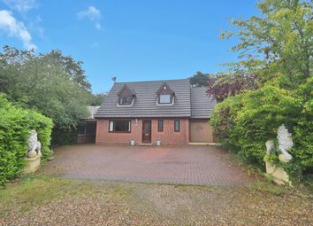 Thumbnail 4 bed bungalow for sale in Woods Close, Norwich, Norfolk