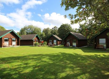 Thumbnail 1 bed lodge for sale in Tore, By Inverness