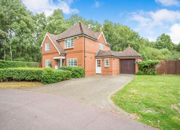 Thumbnail 4 bedroom detached house to rent in Kings Ride, Ascot