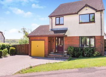 Thumbnail 4 bedroom detached house for sale in New Meadow, Ivybridge