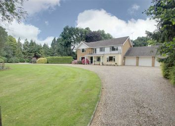 Thumbnail 5 bed detached house for sale in Tinkers Lane, Wigginton, Tring