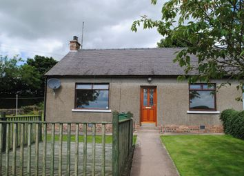 Thumbnail 2 bed semi-detached house to rent in Smithfield Farm, Angus