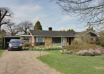 Thumbnail 5 bedroom detached bungalow for sale in Charles Close, Wroxham, Norwich