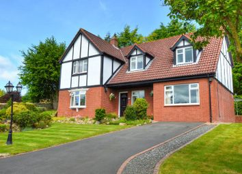 Thumbnail 4 bed detached house for sale in Rothbury, Hillside, Redwood