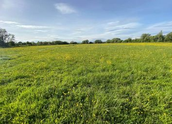 Thumbnail Land for sale in Land For Sale, Peterstone Wentlooge
