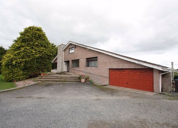 Thumbnail 3 bed detached bungalow to rent in Belfast Road, Ballynahinch