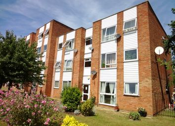 Thumbnail 2 bed flat to rent in Trapstyle Road, Ware