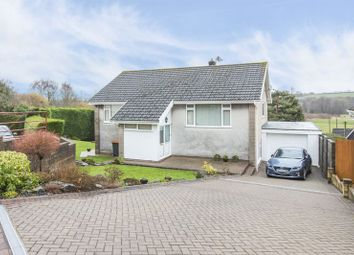 Thumbnail 4 bed detached house for sale in Uskvale Close, Caerleon, Newport