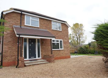 Thumbnail 4 bedroom detached house to rent in King Edwards Road, Ascot