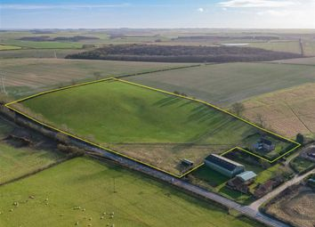 Thumbnail 5 bed equestrian property for sale in Grimsby Road, Cabourne