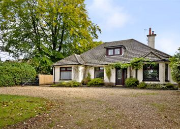 Thumbnail 4 bedroom bungalow for sale in Highfield Road, West Moors, Ferndown, Dorset