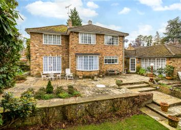 Thumbnail 4 bedroom detached house for sale in Pinecote Drive, Sunningdale, Berkshire