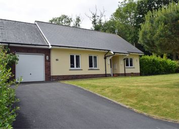 Thumbnail 4 bed detached bungalow for sale in Dolphin Court, New Quay, Ceredigion