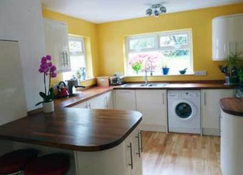Thumbnail 4 bed semi-detached house to rent in Poltair Road, Penryn