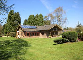 Thumbnail 4 bed detached house for sale in Brislands Lane, Four Marks, Alton, Hampshire