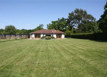 Thumbnail 3 bed detached bungalow for sale in Binfield Vineyard, Forest Road, Wokingham, Berkshire