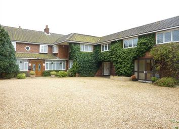 Thumbnail 4 bed detached house for sale in Long Acre, Louth Road, Fotherby, Louth