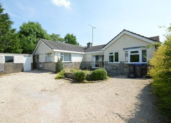 Thumbnail 4 bed detached bungalow for sale in Mill Lane, Mere, Warminster