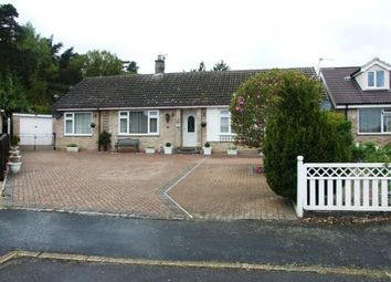 Thumbnail 4 bed bungalow for sale in Brandon, Suffolk