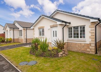 Thumbnail 3 bed detached bungalow for sale in Kenneth Court, Kennoway, Leven