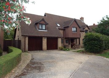 Thumbnail 5 bed detached house to rent in Lavenham Drive, Biddenham, Bedford