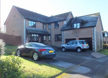 Thumbnail 5 bed detached house for sale in Studland Park, Westbury, Wiltshire