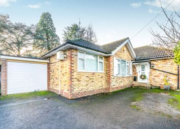 Thumbnail 3 bed bungalow to rent in Westcott Street, Westcott, Dorking