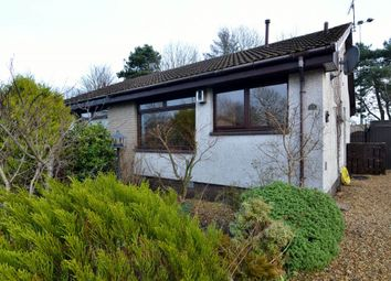 Thumbnail 1 bed semi-detached bungalow for sale in 15 Huntingtower Crescent, Perth