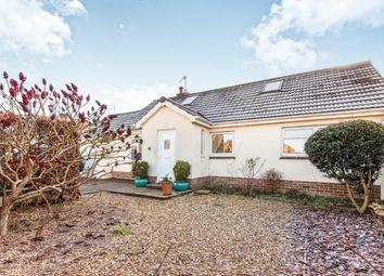 Thumbnail 4 bedroom bungalow for sale in Honiton, Devon
