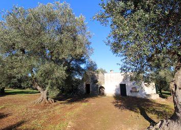 Thumbnail Land for sale in Contrada Cantrapa, Ostuni, Brindisi, Puglia, Italy