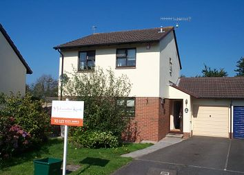 Thumbnail 3 bed detached house to rent in Lagoon View, West Yelland, Barnstaple
