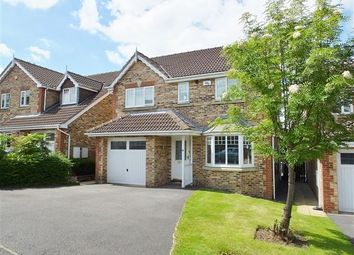 Thumbnail 4 bed detached house for sale in Fox Lane Court, Sheffield