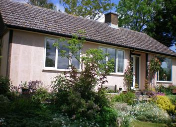 Thumbnail 3 bed detached bungalow for sale in Thornicombe Hill, Thornicombe, Blandford Forum