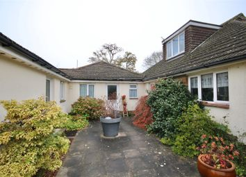 Thumbnail 1 bed terraced bungalow to rent in Victory Avenue, Horndean, Waterlooville