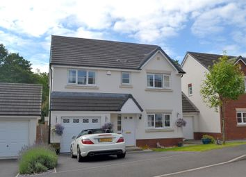 Thumbnail 4 bedroom detached house for sale in Clos Y Wern, Hendy, Swansea