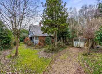 Thumbnail 5 bed bungalow for sale in Milford, Godalming, Surrey
