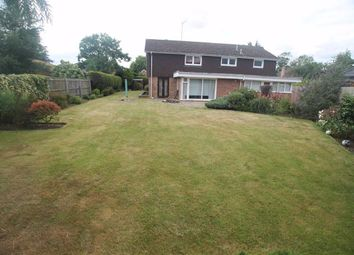 Thumbnail 5 bed detached house to rent in Overstone Road, Sywell, Northampton