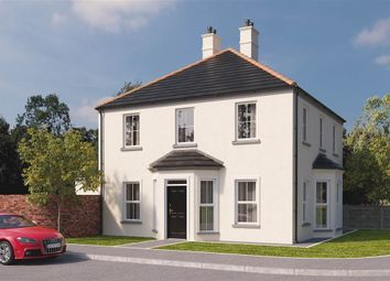 Thumbnail 4 bedroom detached house for sale in 59, Hartley Hall, Greenisland