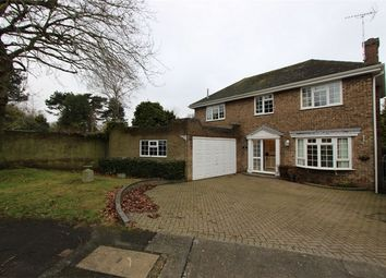 Thumbnail 3 bed detached house to rent in 6 Netherfield, Benfleet, Essex