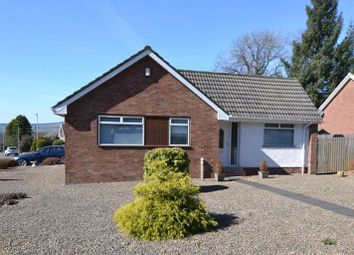 Thumbnail 2 bed detached bungalow for sale in Roebank Road, Beith