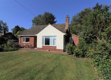 Thumbnail 4 bed detached house for sale in Pontshill, Ross-On-Wye
